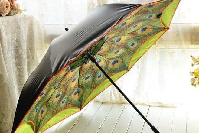 parapluie inverse paon